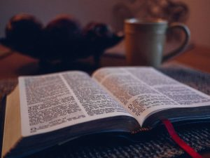 Why Christians don't read the bible